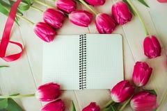 Apenas chovido sobre Tulipa cor-de-rosa no fundo de madeira branco Fotografia de Stock