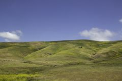 Apenas colinas al azar en California imagen de archivo libre de regalías