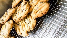 Apenas galletas cocidas del microprocesador de chocolate Fotografía de archivo