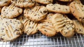 Apenas galletas cocidas del microprocesador de chocolate en los estantes Imagen de archivo libre de regalías