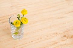 Apenas llovido encendido La primavera o el verano florece en vidrio en un fondo de madera de la tabla Foco selectivo foto de archivo