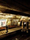 Apenas no metro ilustração royalty free