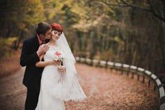 Apenas pareja casada que presenta en un parque del otoño Fotos de archivo