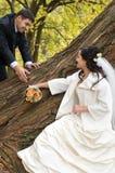 Apenas pares casados Fotografía de archivo