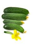 Apenas pepinos escolhidos no fundo branco Fotos de Stock