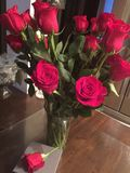 Apenas porque rosas rojas Fotos de archivo