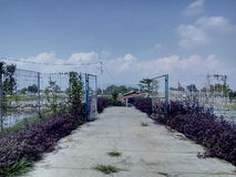 Apenas uma paisagem Fotos de Stock Royalty Free