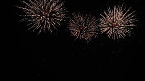 Apenas un plan maravilloso de lejos en una demostración colorida de la noche firework metrajes