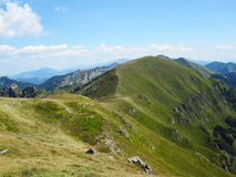 The Apennine Mountains in Italy. A panoramatic view of the grassy Apennine mountains in Italy Stock Image