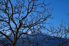 Apennines-Landschaft stockbild