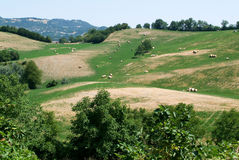 Apennines valley at Emilia Romagna Royalty Free Stock Photography