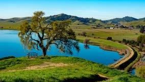 Aperçu de lac park de vallée de lagune de colline image stock