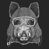 Aper, boar, hog, wild boar. Vintage motorcycle hemlet. Retro style illustration with animal biker for children, kids stock illustration