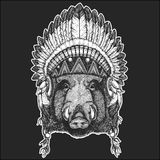 Aper, boar, hog, wild boar Cool animal wearing native american indian headdress with feathers Boho chic style Hand drawn. Aper, boar, hog, wild boaraper, boar Stock Photos