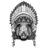 Aper galt, gödsvin, gödsvin, löst djur för vildsvin som bär den indiska hatthuvudbonaden med den stam- fjäderBoho etniska bilden vektor illustrationer