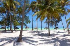 Aperfeiçoe a praia branca com palmeiras, Paje da areia, Zanzibar, Tanzânia fotos de stock royalty free