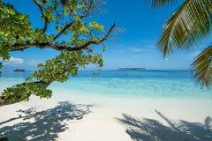 Aperfeiçoe a praia branca da areia com as árvores no primeiro plano imagem de stock royalty free