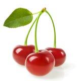 Aperfeiçoe cerejas doces com a folha isolada em um fundo branco Imagens de Stock Royalty Free
