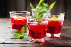 Aperitif with campari, mint and lemon Royalty Free Stock Photos
