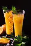 Aperitif med vodka, orange fruktsaft och mintkaramellen Skruvmejselcoctail royaltyfri bild