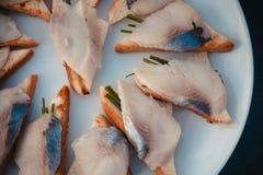 Aperitif mit Fischnahaufnahme Lizenzfreie Stockfotos