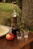aperitif ogród Obrazy Stock