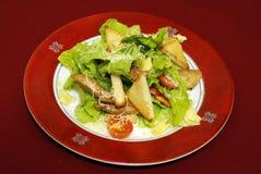 aperitivi delle insalate Fotografia Stock