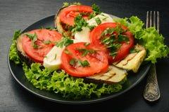 Aperitivo - berenjenas asadas a la parrilla con la mozzarella y los tomates foto de archivo libre de regalías