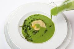 Aperitivo con i ravioli vegetariani del parmigiano in minestra di rucola Fotografia Stock