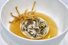 Aperitivo de jantar fino - Terrine do cogumelo com caranguejo Imagens de Stock