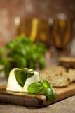 Aperitivo del formaggio di capra del basilico Fotografia Stock