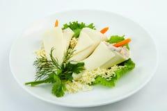 Aperitivo del queso Foto de archivo