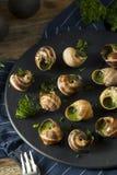 Aperitivo quente francês extravagante do escargot imagem de stock