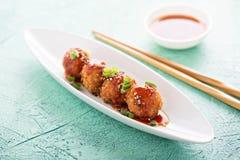Aperitivos asiáticos fritos Imagen de archivo libre de regalías