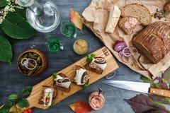 Aperitivos com pão e banha, vista superior foto de stock