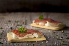 Aperitivos con el salami y el queso Imágenes de archivo libres de regalías