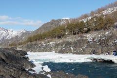 Apertura del ghiaccio sul fiume di Katun del turchese in primavera Fotografia Stock