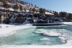 Apertura del ghiaccio sul fiume di Katun del turchese in primavera Immagine Stock Libera da Diritti