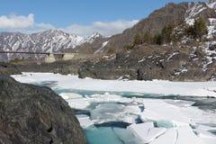 Apertura del ghiaccio sul fiume di Katun in primavera, Altai, Russia Immagini Stock Libere da Diritti