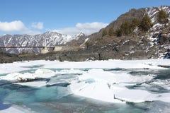 Apertura del ghiaccio sul fiume di Katun in primavera, Altai, Russia Fotografia Stock