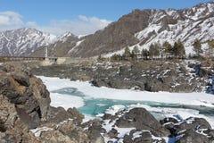 Apertura del ghiaccio sul fiume di Katun in primavera, Altai, Russia Fotografie Stock Libere da Diritti