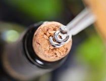 Apertura della bottiglia di vino nella celebrazione Fotografia Stock Libera da Diritti