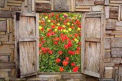 Apertura di legno della finestra con la vista di bello giardino floreale della molla fotografia stock