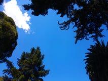 Apertura en el cielo azul Fotografía de archivo