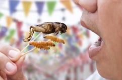 Apertura felice dell'uomo la sua bocca che mangia l'insetto di bambù del grilli e dei vermi sullo spiedo di legno Gli insetti del fotografia stock