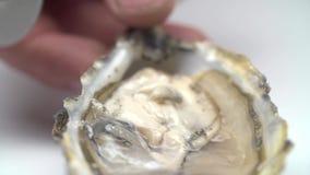 Apertura lenta della conchiglia di ostrica video d archivio
