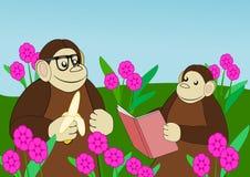 Apes  in Flower Garden Stock Images