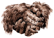 Apes hands. Hands of adult gorilla -  it is power and horror Royalty Free Stock Images