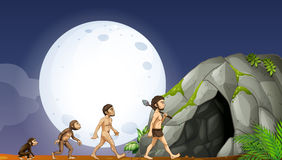 Apes and human development. Illustration Royalty Free Stock Photos