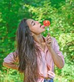 Apetite sedutor Mulher completamente do desejo que come o tomate A menina guarda a forquilha com o tomate maduro suculento A meni imagem de stock